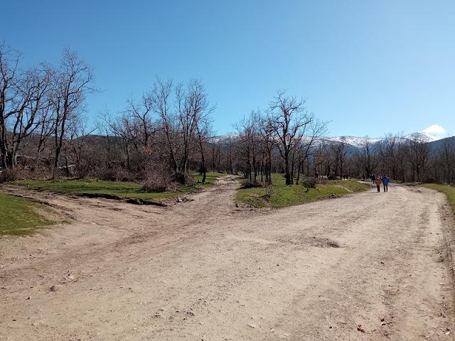 Aquí empieza el camino, el del centro, para no seguir la pista forestal