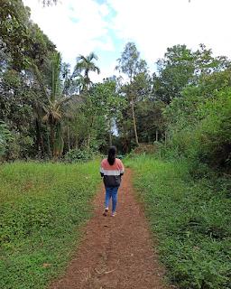 walking-down-from-meenmutty-waterfalls