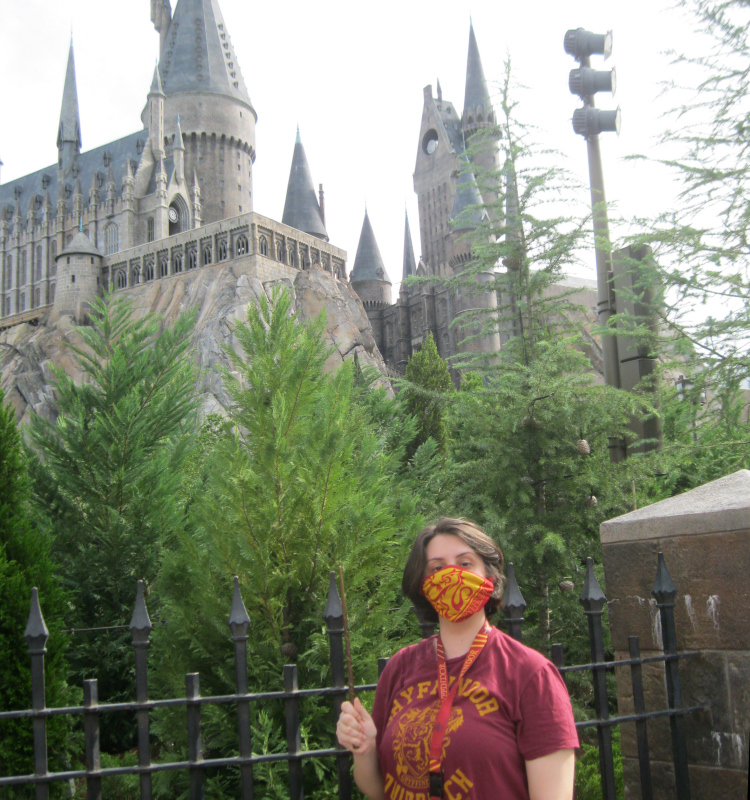 Wizarding World of Harry Potter Pandemic