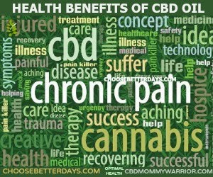 LEARN MORE ABOUT CBD