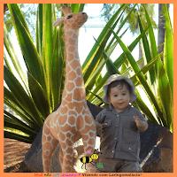 Miguel com um ano e três meses