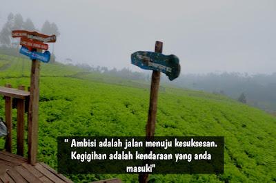 Quotes perjalanan untuk jalan menuju kesuksesan