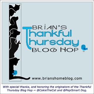 Brian's Thankful Thursday Blog Hop badge