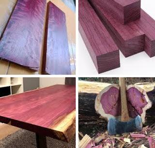 Kelebihan dan kekurangan kayu purple heart