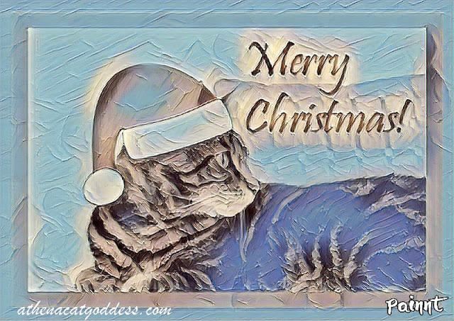 Caturday Art Christmas