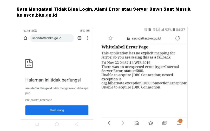 Cara Mengatasi Tidak Bisa Login, Alami Error atau Server Down Saat Masuk ke sscn.bkn.go.id