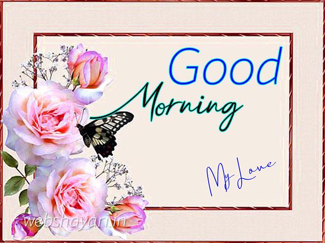 rose flower good morning images download rose me good morning images