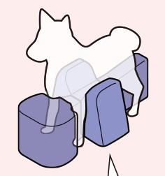 apoio para cães com dificuldade de locomoção