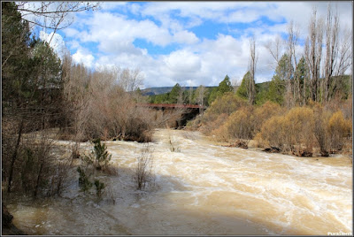 Crecida del Río Escabas en La Playeta (Cañamares) y puente de la carretera que va a Cañizares