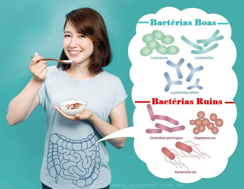 Benefícios dos Probióticos Para Mulheres: Eles Podem Melhorar a Saúde Feminina?