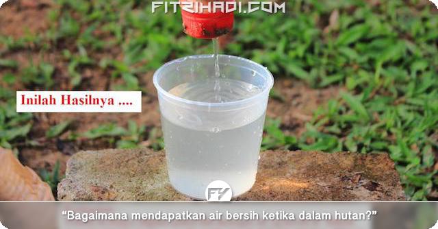 (Tips Survival) Cara Dapatkan Air Bersih Ketika Dalam Hutan