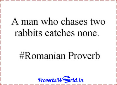 A man who chases two rabbits catches none, Proverbs World, Romanian Proverb, Proverb, Proverb Meanings, Proverbs sentences