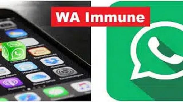WA Immune