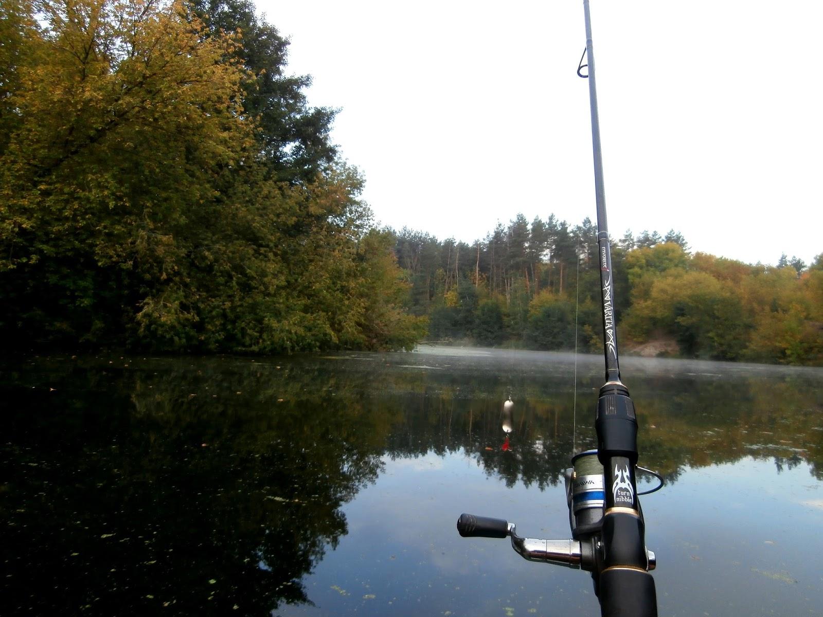 киев рыбалка. прогноз клева рыбы