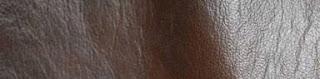Jenis kulit kangguru