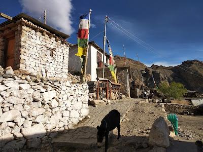 Hangrang valley - Nako Gompa - ici-colo.ro