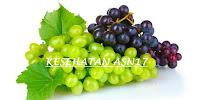 Sejuta Khasiat Dari Buah Anggur untuk kesehatan