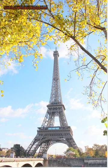 Eiffel Tower Wallpaper 9294 WallpapersFrench WallpapersHD Paris Evening WallpaperEiffel In EveningEiffel Snow