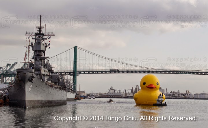 Ringo Chiu Photography August 2014