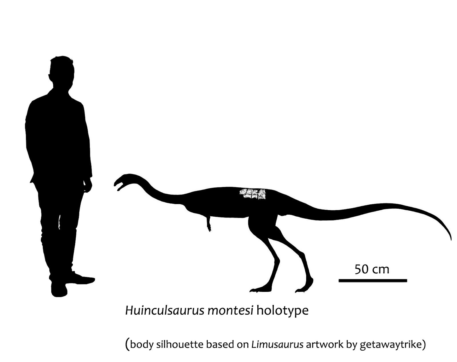 Huinculsaurus%2Breconstruction%2Bcopia.jpg
