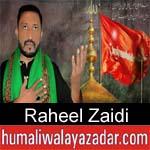 https://www.humaliwalyazadar.com/2018/10/raheel-zaidi-nohay-2019.html