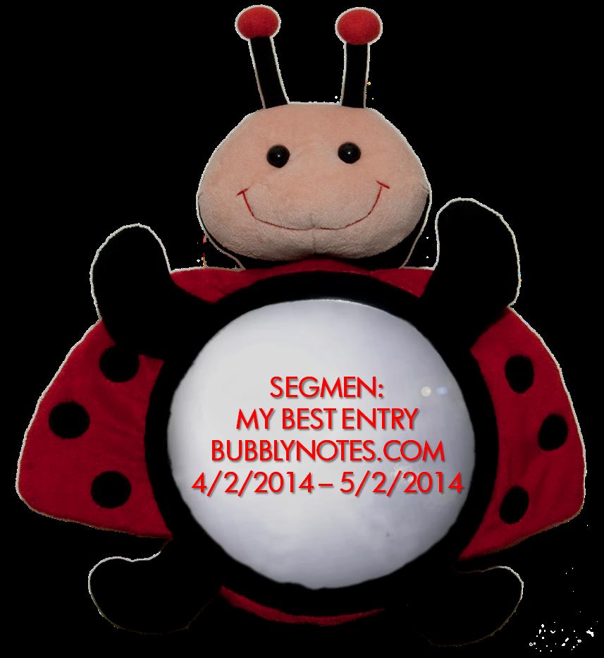 http://www.bubblynotes.com/2014/02/segmen-my-best-entry-bubblynotescom.html