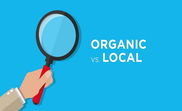 Why Organic SEO and Local SEO Are Important for a Business? How It Can Attract New Customers?