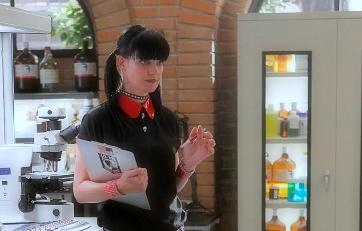 Pauley Perrette 'terrified' of Mark Harmon, says he will not go back to 'NCIS'