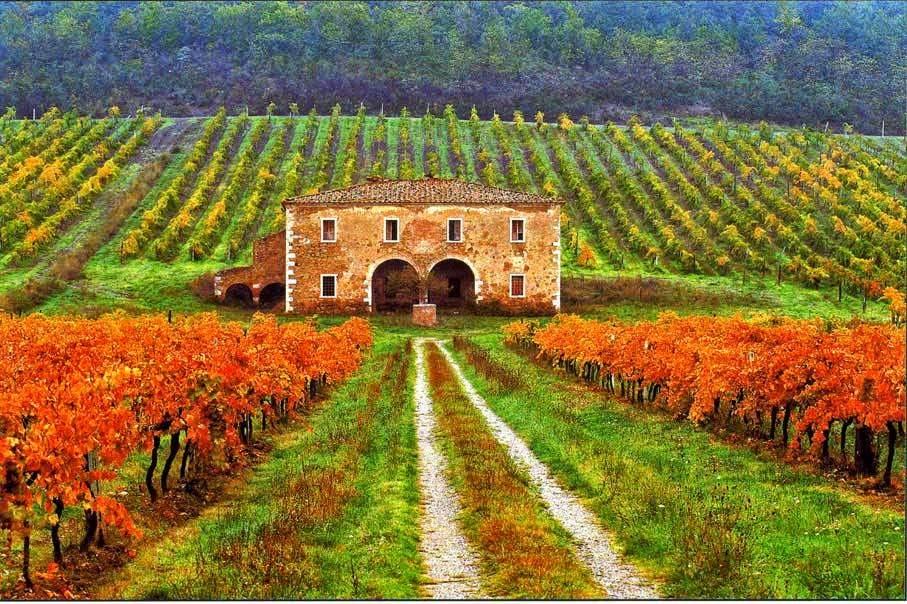 Visitar la toscana en octubre - Casa rural en la toscana ...