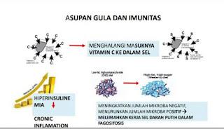 Asupan Gula dan Imunitas