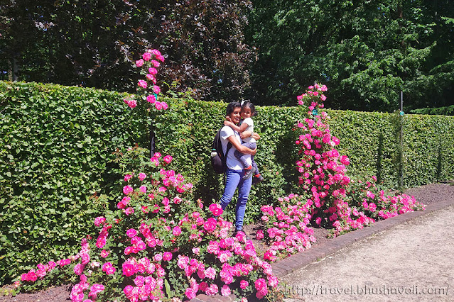 Castle Coloma Rozentuin Rose Garden near Brussels
