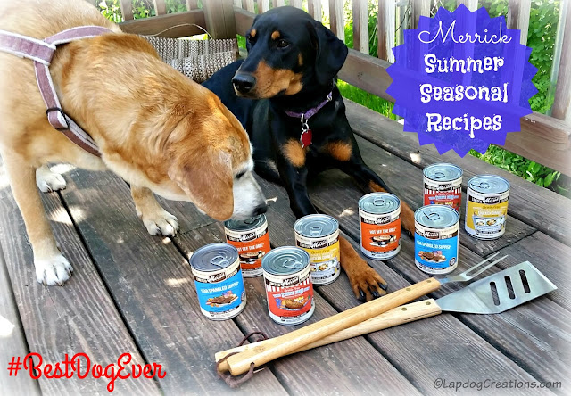 The #Merrick Summer Seasonal Recipes Are Here! Penny & Sophie are ready for a BBQ - is your #BestDogEver ready? #dogfood #rescuedogs ©LapdogCreations