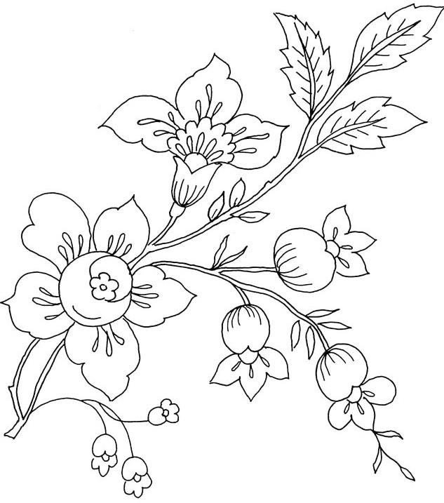 Gambar Mewarnai Bunga Mataharimawartulipmelati