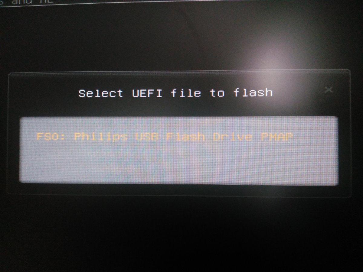 Bios update msi p6ngm2 - polarsg