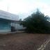 Árvore caída no rua Dr. José Gonçalves em virtude da chuva e ventos na noite de ontem