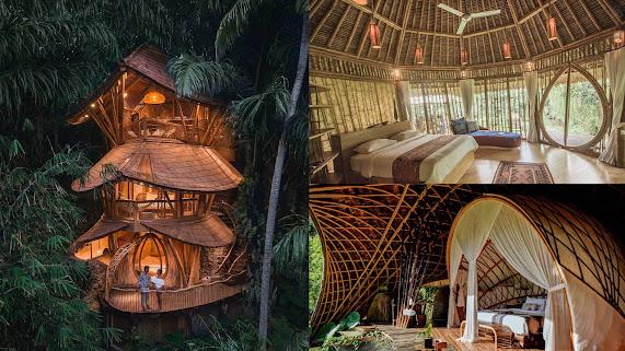 Bali - Trải nghiệm nhà trên cây giữa rừng tre