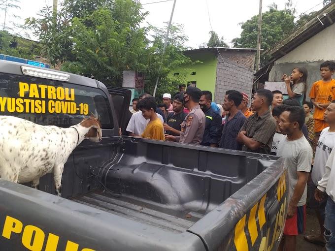 Gegara Motor Mogok, Dua Pencuri Kambing Ini Ditangkap Warga Mbawi