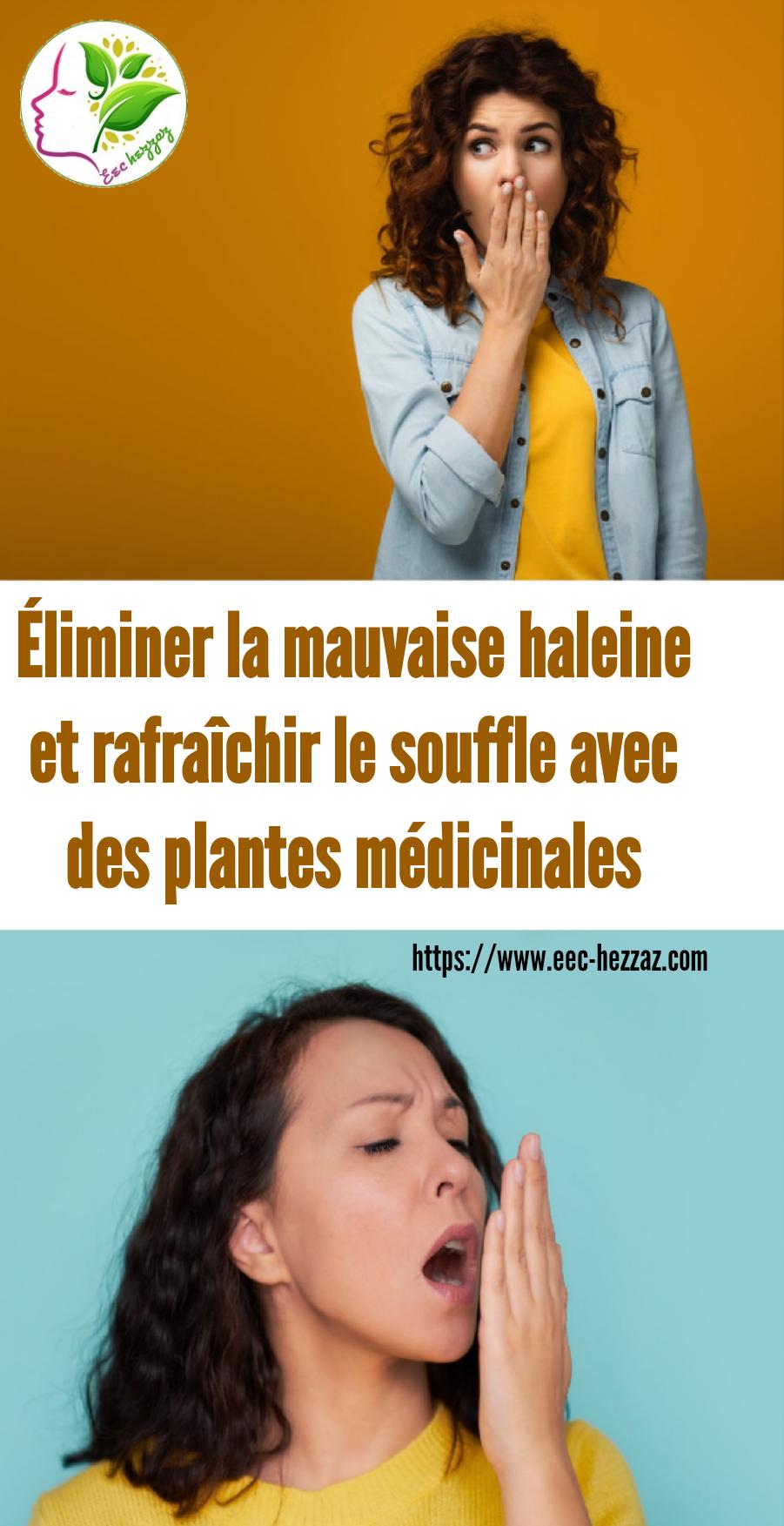 Éliminer la mauvaise haleine et rafraîchir le souffle avec  des plantes médicinales