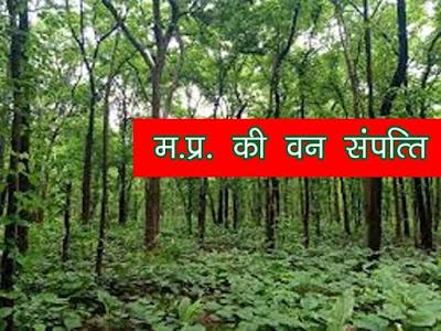 मध्य प्रदेश वन सम्पत्ति | MP Ki Van Sampati
