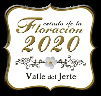 Turismo Valle del Jerte comienza a informar sobre las previsiones de la floración 2020