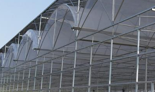 Agricultural Hydroponic Green Houses