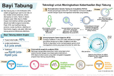 Program Bayi Tabung atau In Vitro Fertilization