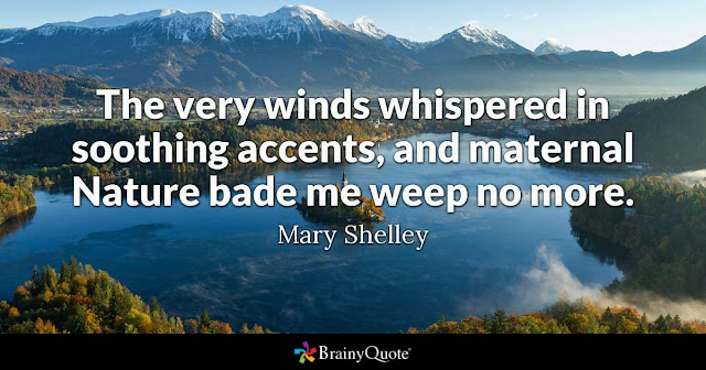 Image of lake in mountainous area and quote by Mary Shelley