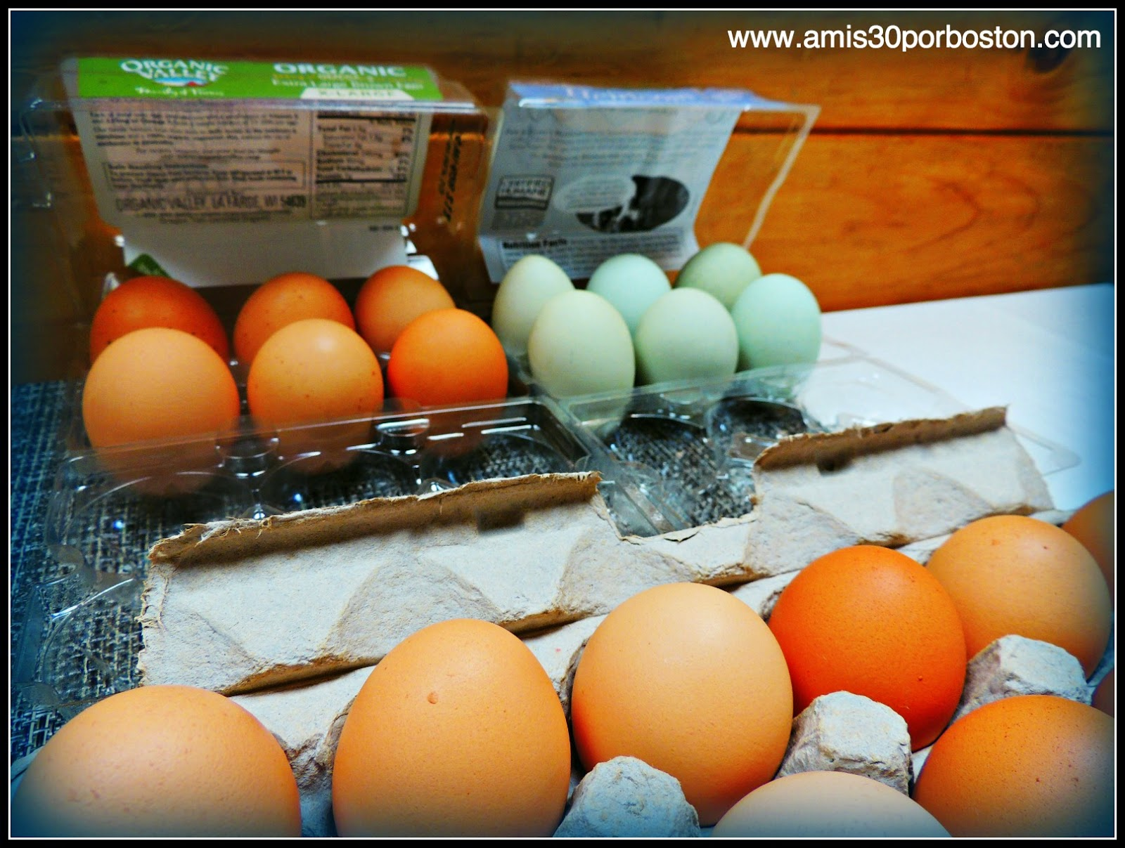 Huevos Azules y Morenos