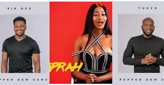 #BigBrotherNaija: More Housemates unveiled - Tuoyo, Kimoprah, Sir Dee and Isilomo (Photos) #BBNaija2019