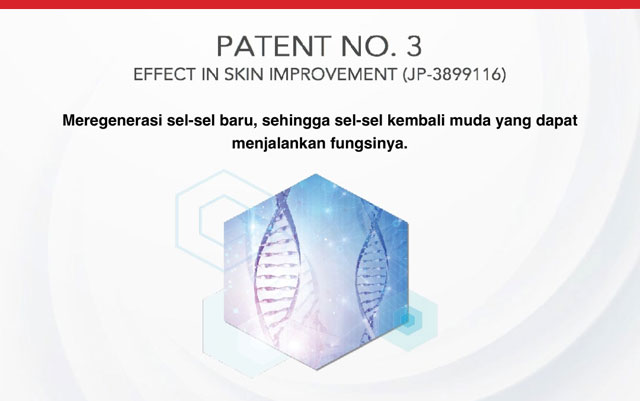 Paten SOP No. 3