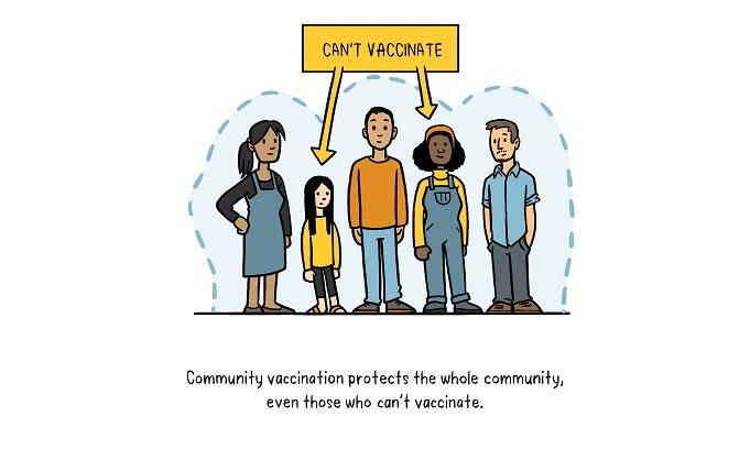 Vaccines Herd Immunity illustration