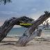 Pengalaman ke Gili Trawangan, Lombok