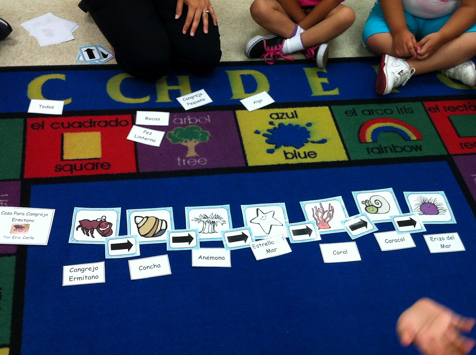 Chalk Talk A Kindergarten Blog A House For Hermit Crab