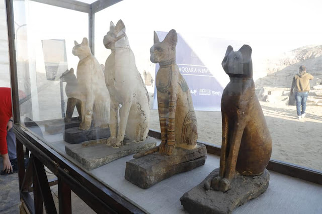 Animal mummies and other discoveries from Saqqara necropolis unveiled